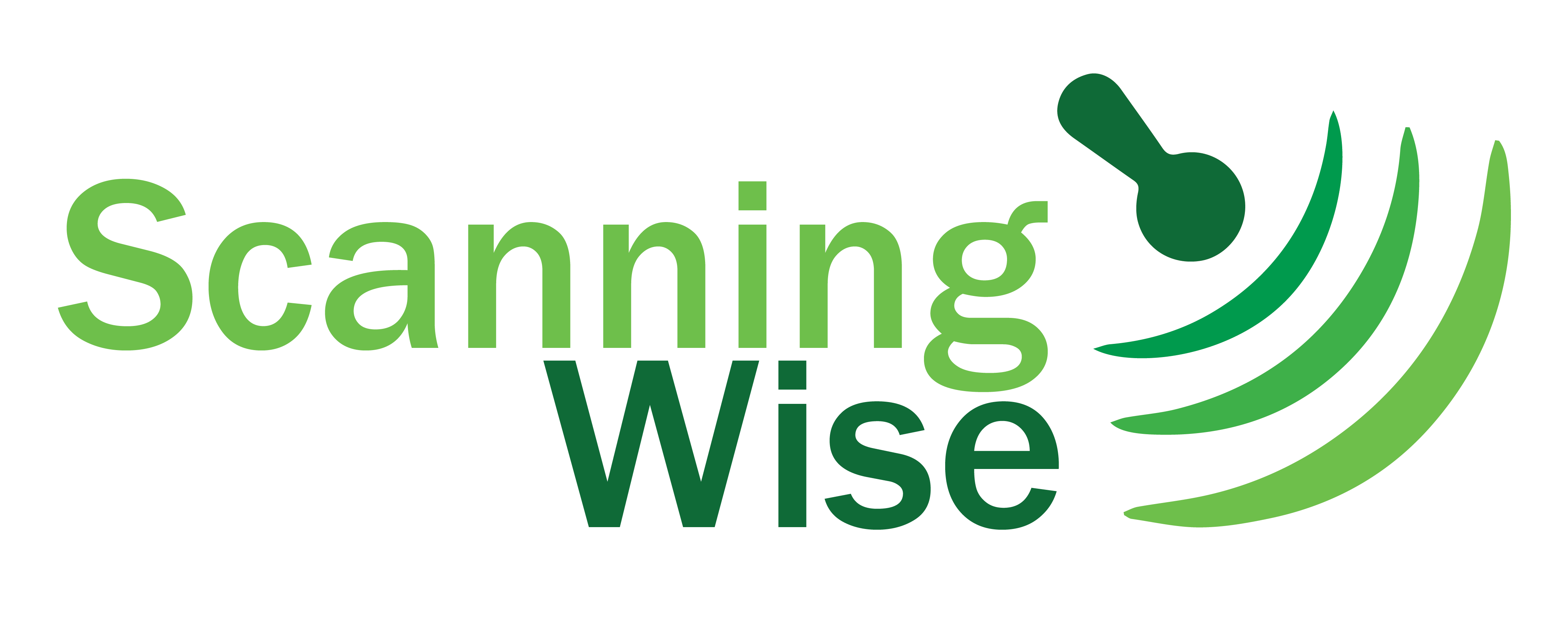 Scanning Wise Logo and Website